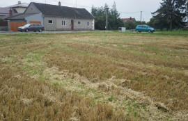Pozemky - Dolany uOlomouce